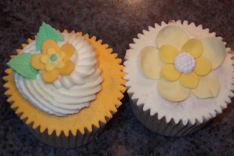 A pair of beautifully crafted vanilla cupcakes