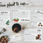 coffee-infographic